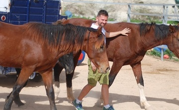 HEAL DIFFERENTLY - 7 days Equine-assisted therapy, Mindfulness and  Meditation Retreat in Gozo, Malta
