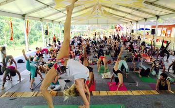 200 Hour Vinyasa and Yin Yoga Teacher Training