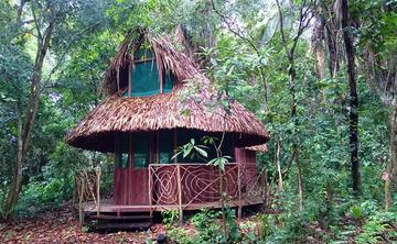 Ayahuasca Women's Retreat - Peruvian Amazon