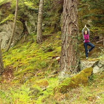 """Kick Start A Healthy YOU!"" 4 day Detox & Wellness Retreat, San Juan Island, Washington State"