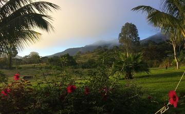 Ayahuasca and Master Plant Retreat in the Peruvian Amazon