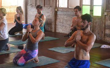 200 Hour Intensive Hatha and Vinyasa Yoga Teacher Training Course