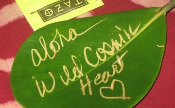 The Wild Cosmic Heart