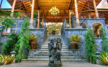 Yoga and Shamanic Journey in Nosara, Costa Rica