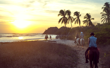 Costa Rica Retreat with Qoya