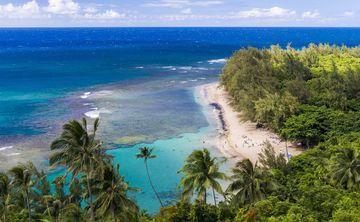 Maui Yoga & Barre Retreat