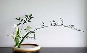 Beginners Ikebana Class