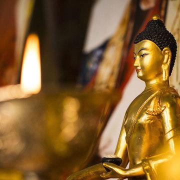 Universal Meditation Center