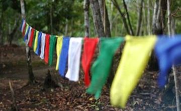 The Rainbow Warrior Retreat