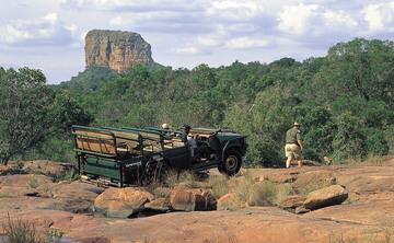 8 Days Yoga & Safari retreat at Entabeni Safari Conservancy, South Africa
