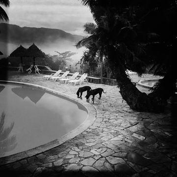 Puerto Mirador Jungle Misty Lodge