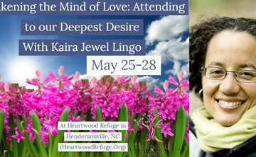 Awakening the Mind of Love: Attending to our Deepest Desire