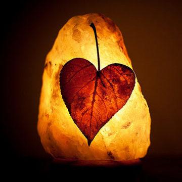 Guided Meditation Donation (Donación de meditación guiada)