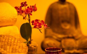 Living a Mindful and Compassionate Life