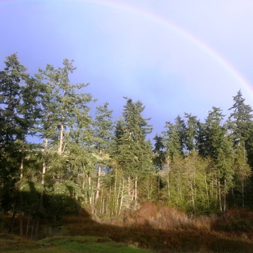 """Introducing a Healthy New YOU!"" 3 day, 2-Night PLUS Wellness Retreat, San Juan Island, Washington State"