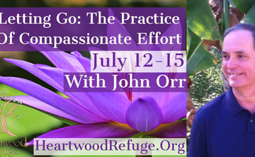 """""""Letting Go"""" The Practice of Compassionate Effort"""