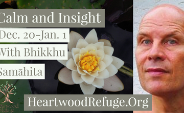 Calm and Insight – 12 Day Meditation Retreat