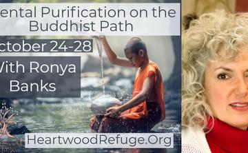 Mental Purification on the Buddhist Path