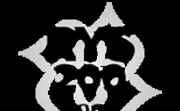 Vida Asana Yoga Alliance 200 Hour YTT