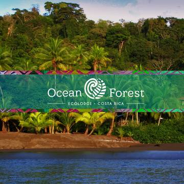 Ocean Forest Ecolodge Retreat (aka Guaria de Osa)