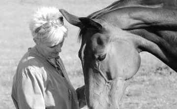 The Power of the Mare (Women's Retreat)