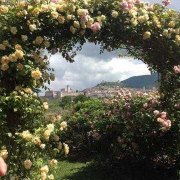 Retreat in Assisi