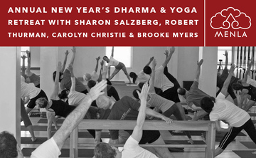 Equanimity for Challenging Times: New Year's Dharma & Yoga Retreat