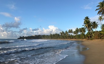 Tobago Total Wellness Immersion Retreat