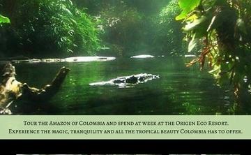Ayahuasca Adventure Trip to the Amazon