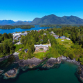 The Homestead Tofino