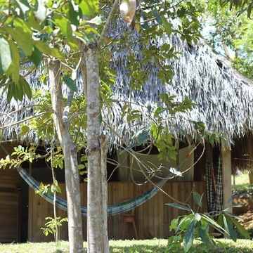 4 Day Reiki Initiation & Yoga retreat at Tambo Ilusion in Amazon of Peru
