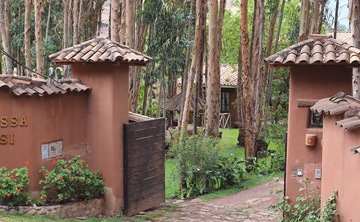 7-Day Ayahuasca Retreat in Sacred Valley