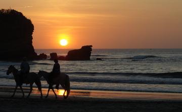 Joy &Gratitude in Costa Rica