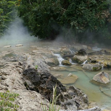 Santuario Healing Amazonian Plant Medicine Center