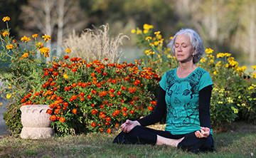 Fall Silent Retreat: The Changing Colors of Your Inner Life