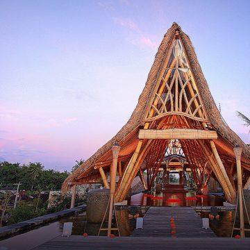 High Vibe & Thrive Bali Yoga Retreat