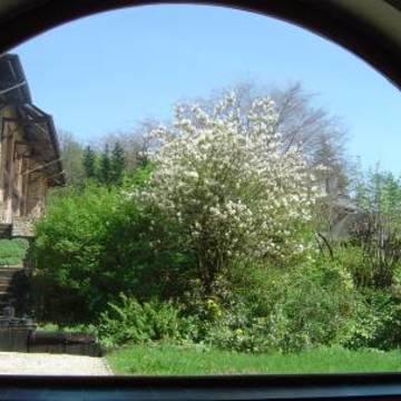 5-day Summer Retreat