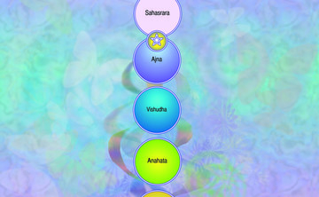 Awakening the Chakras:  Jan 2019 (Day only)