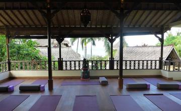 Bali Women's Health and Wellness Retreat