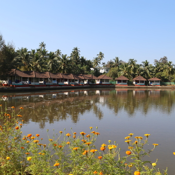 Ashtanga Vinyasa Yoga Teacher Training Goa -Mantra Yoga