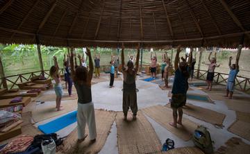 Sacred Medicine Retreat