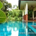 Gecko Villa Farm Stay in Rural Thailand