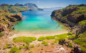 Baja Bliss:  Aquatic Bodywork