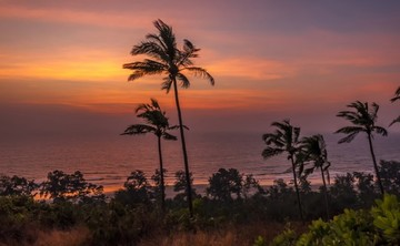Divine Play – Vinyasa Yoga Retreat in Goa