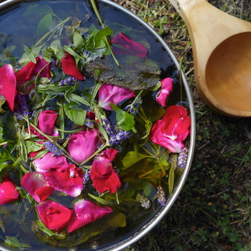 Healing the womb women's dieta with ayahuasca and kambo