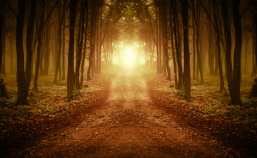 Trusting Your Mystical Experiences