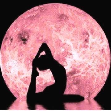 Iyengar Yoga Retreat (Sold out)