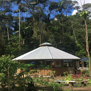5- day or 13-day Ayahuasca retreat