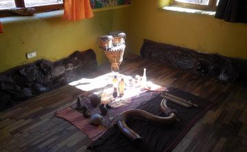 Retreat with Ayahuasca