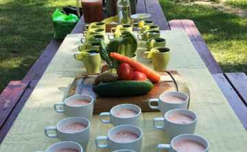 Juice Fasting Retreat